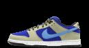 Nike Dunk Sb Pro ACG