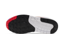 Nike Air Max 1 Windbreaker