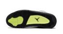 Air Jordan 4 Neon Air Max 95