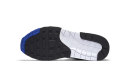 Nike Air Max 1 OG Anniversary 2017 Blue