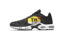Nike Air Max Plus «Big Logo»